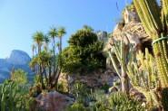 Jardin-Exotique-de-Monaco-IMG_2673-1200x800